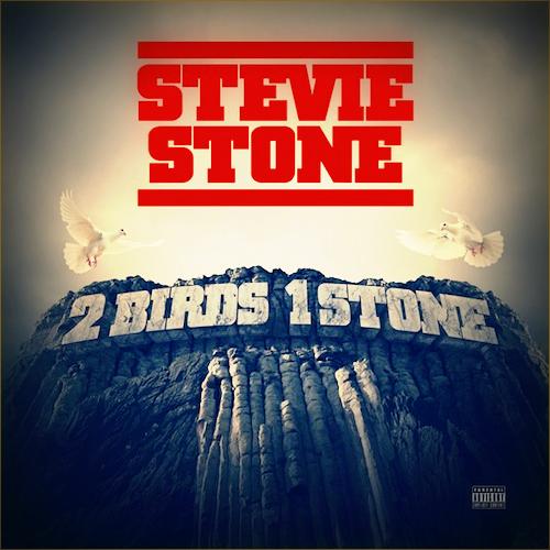 steviestone-2birds1stone