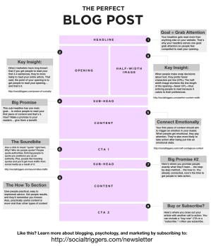 The-Perfect-Blog-Post-Infographic